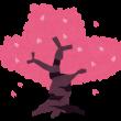 sakura_tree