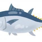 魚の冷凍保存期間はいつまで?味が落ちない保存ルールは?