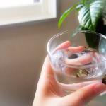 熱中症対策に有効な食べ物や飲み物は?今すぐできる対策予防は?